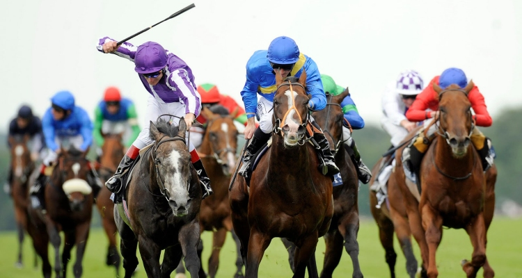 Simple Ways to Win Horse Racing